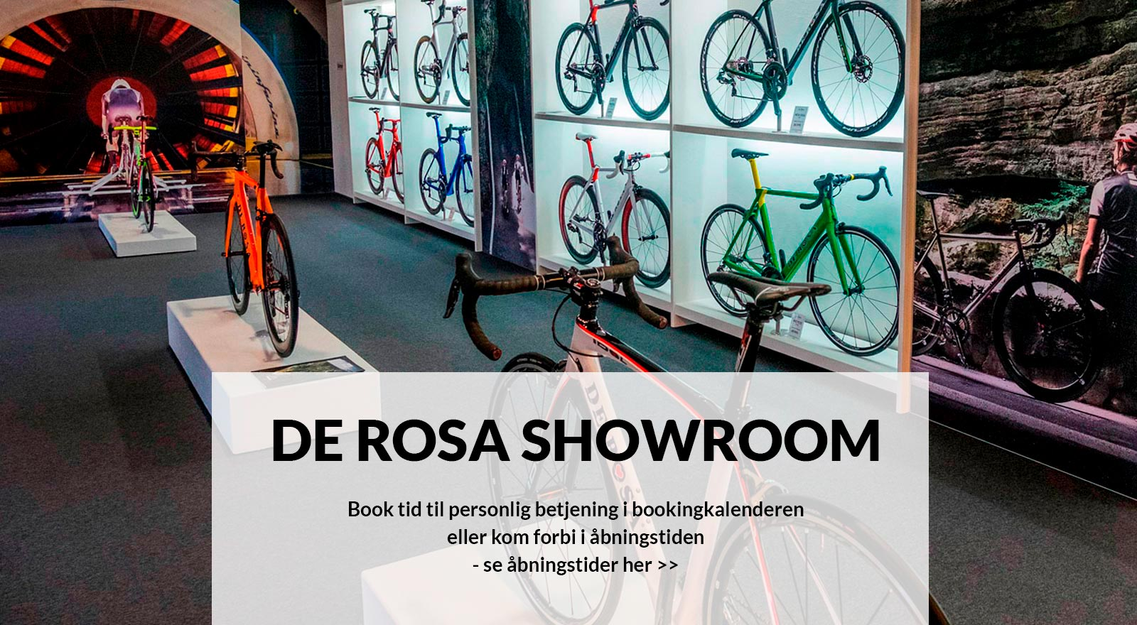 De rosa showroom 1600 txtny